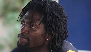 Pardew menilai bahwa kemampuan yang di miliki oleh seorang Adebayor sangat cocok sekali untuk timnya